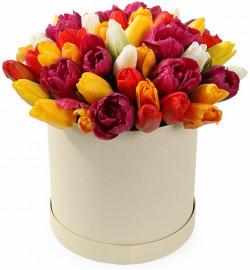 Коробка с 35 тюльпанами