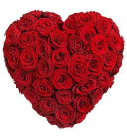 Сердце из 55 роз