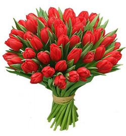 Букет из 39 тюльпанов
