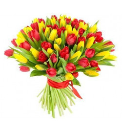 Букет из 65 тюльпанов